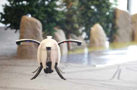 Egg Drone: An Egg can Fly