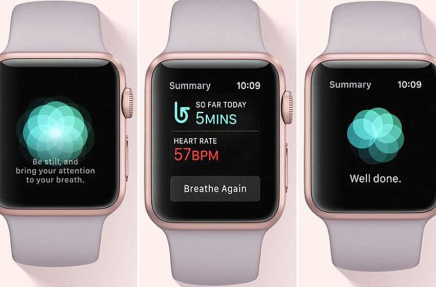 How Apple Watch Revealed My Toxic Stress Level, and Helped Me Fix it?