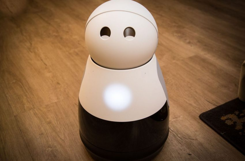 How You Can Use the Kuri Robot For Cooking, Cleaning, and Other Purposes